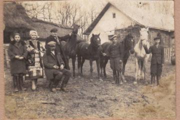 19102_original