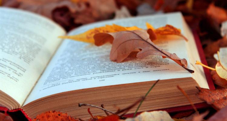 nature___seasons___autumn_____book_on_autumn_leaves_086155_