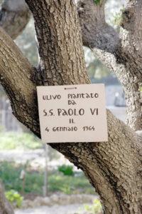 Гефсиманський сад