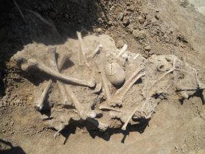останки з масового захоронення вояків часів Першої світової війни.