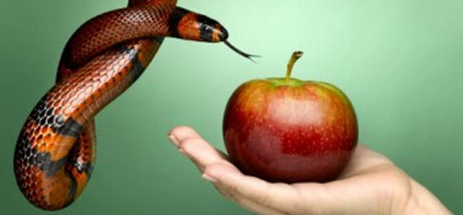female had holding apple with snake