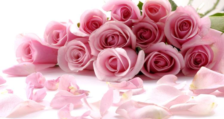 Holidays___Saint_Valentines_Day_Rozy_S_Dnem_Svyatogo_Valentina_057024_